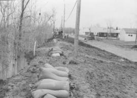Sandbags on the dyke (Wildwood Park - flood, 1950)