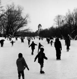 Skating Rink at the Assiniboine Park Duck Pond