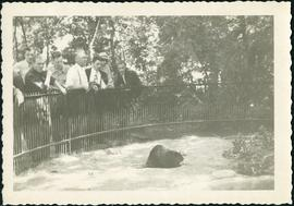 Original beaver enclosure at Assiniboine Park