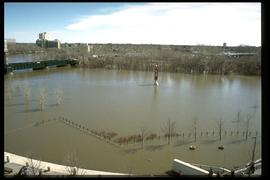 1997 flood - The Forks - view of the confluence