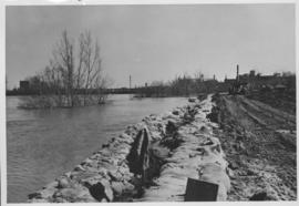 No. 8 A portion of the Lyndale dike in Norwood with the Norwood Bridge in the background