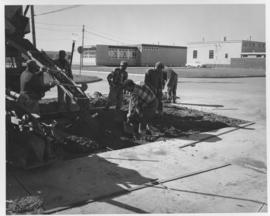 Pavement construction Project D, south 12 foot lane of north roadway on Wellington Avenue (between Bradford Street and Madison Street), September 27, 1962