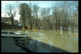 1997 flood - 21 Roslyn Road - viewing west
