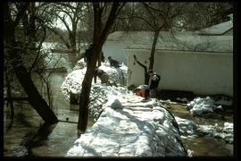 1997 flood - Scotia Street - high water