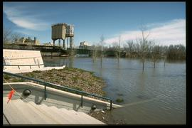 1997 flood - The Forks