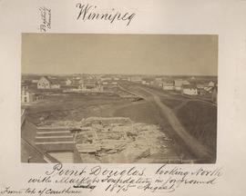 Point Douglas looking north with Market foundation in foreground, August 1875