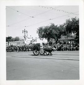 Winnipeg's 75th Anniversary parade - Red River cart