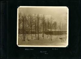 William Smaill Photo Album – Page 110