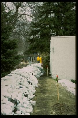 1997 flood - Kingston Row - dike