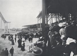 Grand Stands, Exhibition Grounds